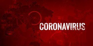 coronavirus software developer