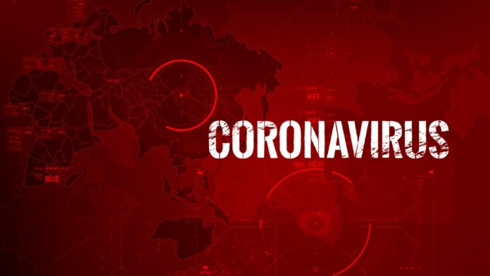 coronavirus software developer