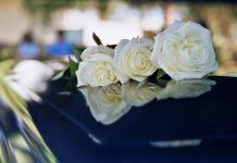 funeral-director-software